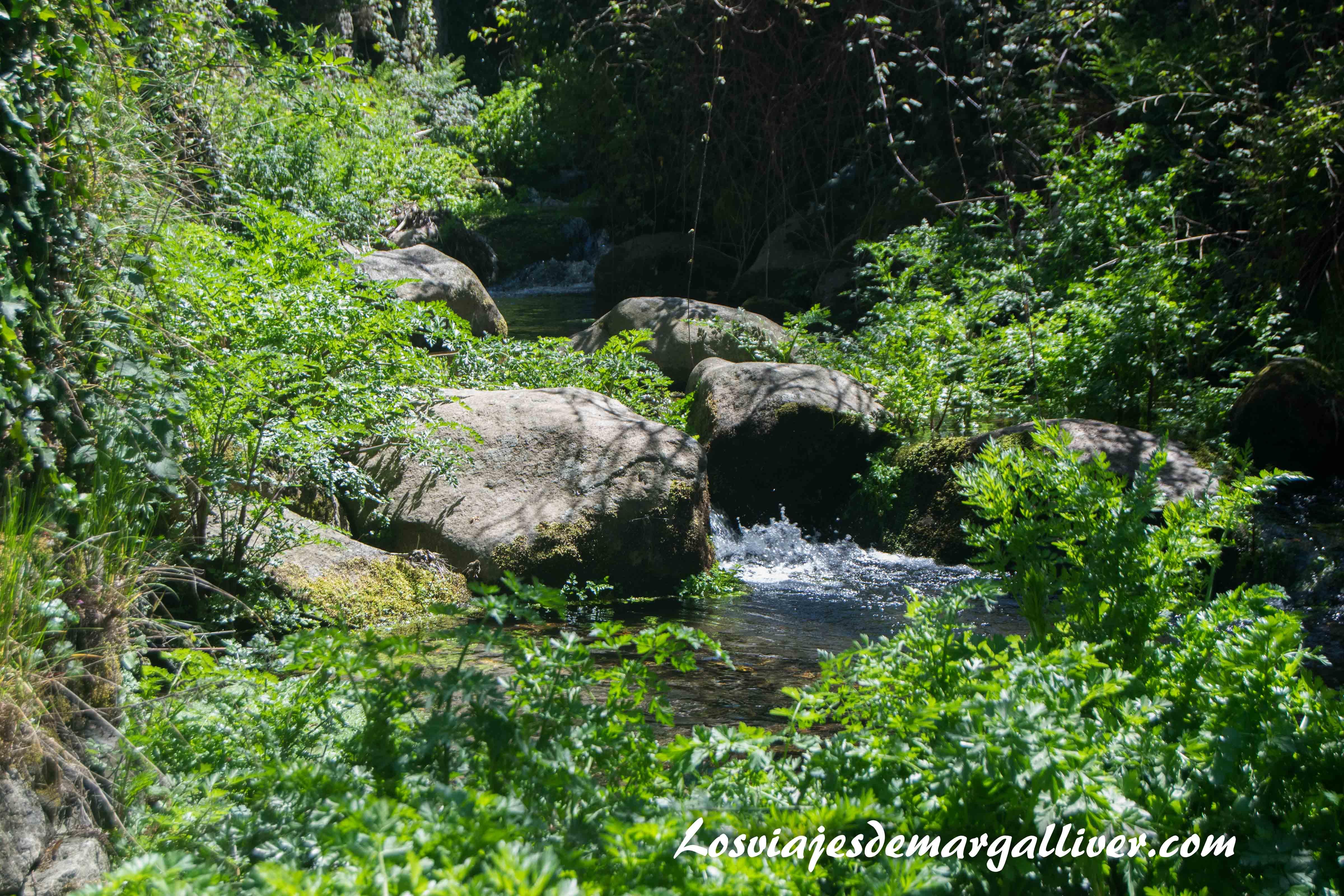 Arroyo de La Alberca - Los viajes de Margalliver